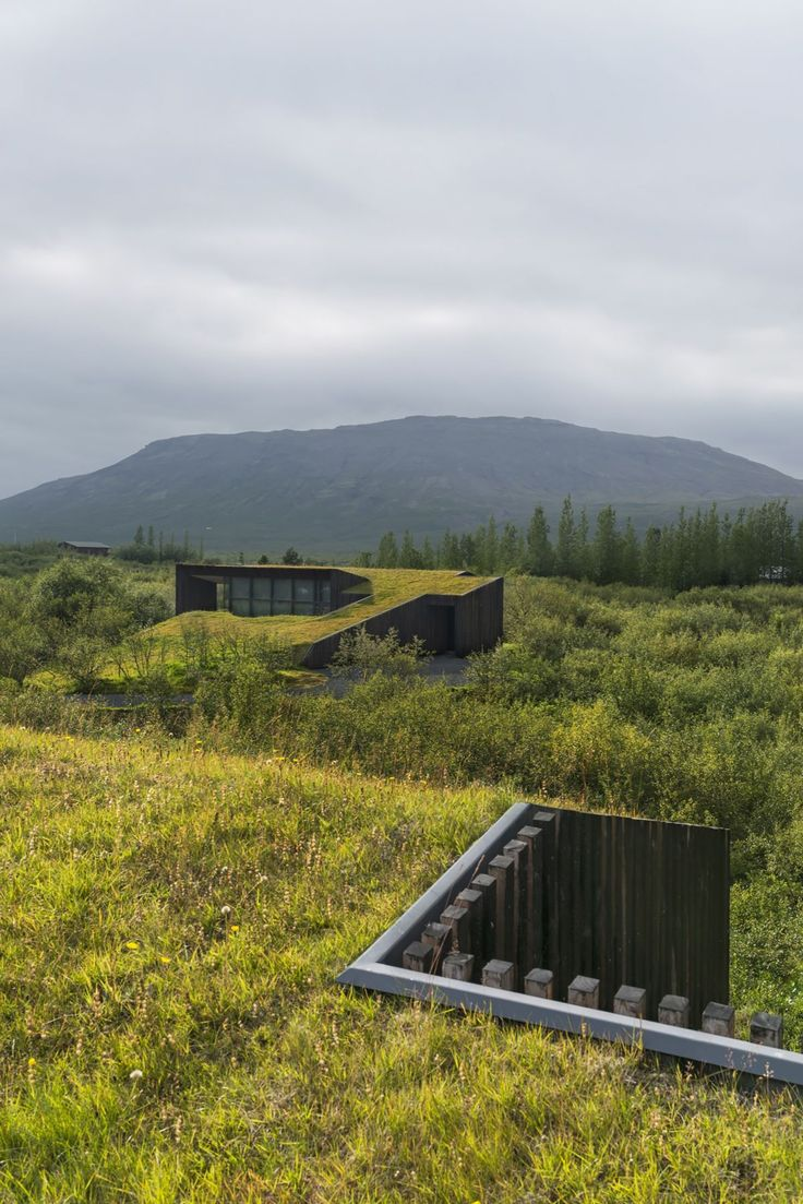 Vacation cottage in Iceland Green Roof Top