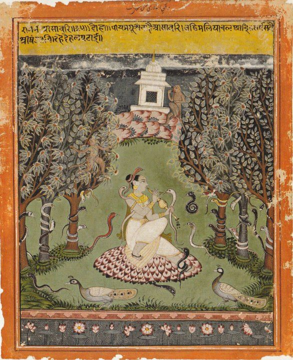 moveoverrover:  Asavari RaginiA female ascetic, probably a yogini, sitting on a  bed of lotus petals as she charms snakes with the sound of her flute.  Yoginis are avid female practitioners of yoga who develop mysterious  magical powers, such as the ability to tame serpents.