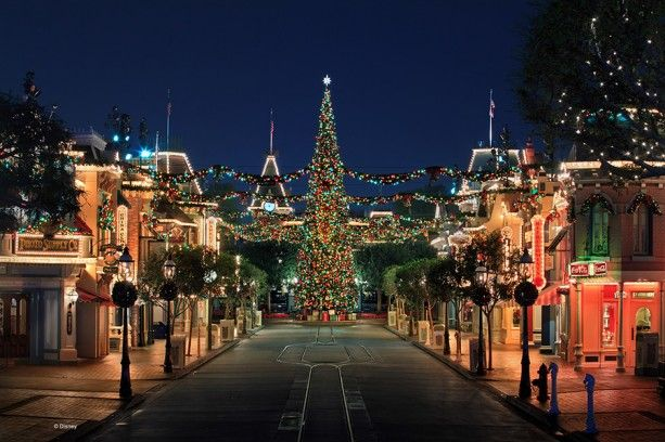 Disneyland Main Street USA Christmas 2014 (this is what I will see every night walking home from work in December.)