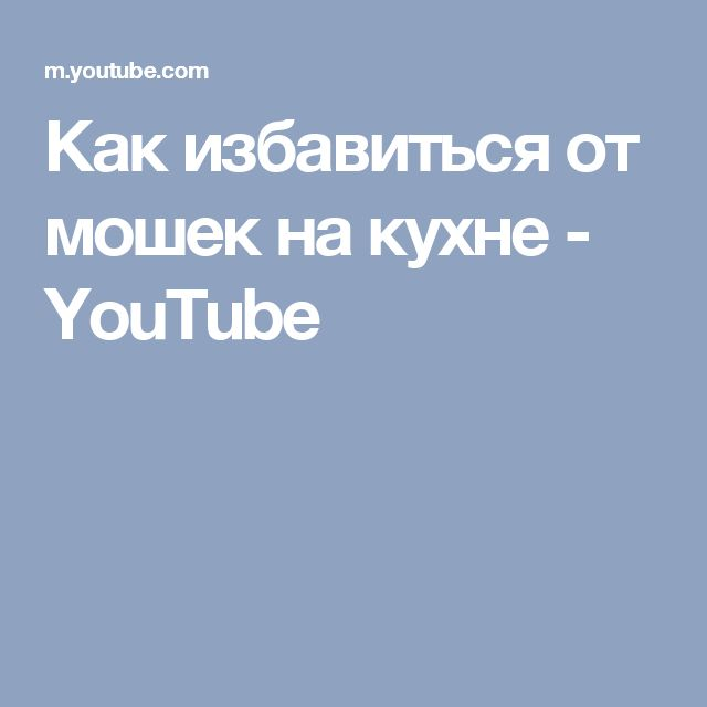 Как избавиться от мошек на кухне - YouTube