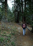 Lake Tahoe Hiking - Rubicon Trail - West Shore-8 mile rt but you can have your car shuttled to make it 4.