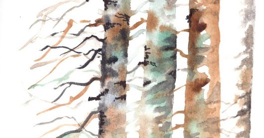 Ancora trame di alberi d'inverno: il gufo nella foresta