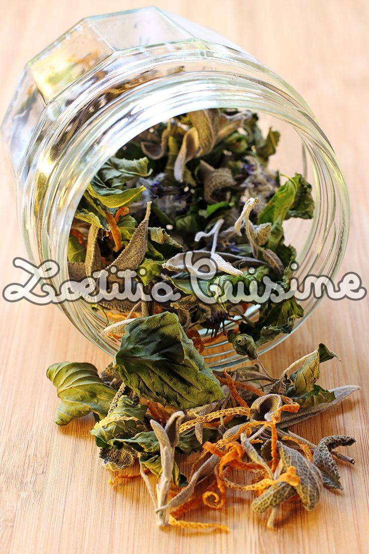Les 597 meilleures images propos de sant sur pinterest for Plante kefir