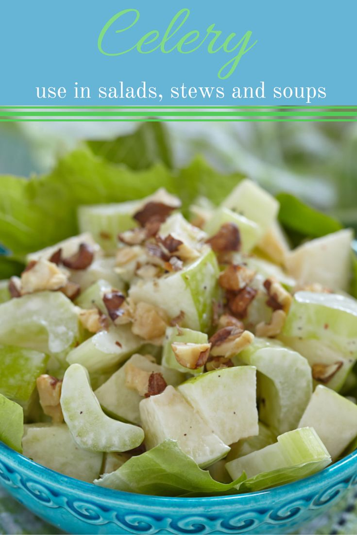 Celery is an essential ingredient in soups and stews, but it can also be very finely chopped up and added to fresh salads