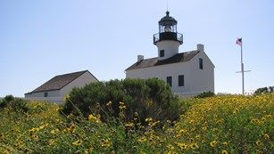 Spring wildflowers at Old Point Loma Lighthouse