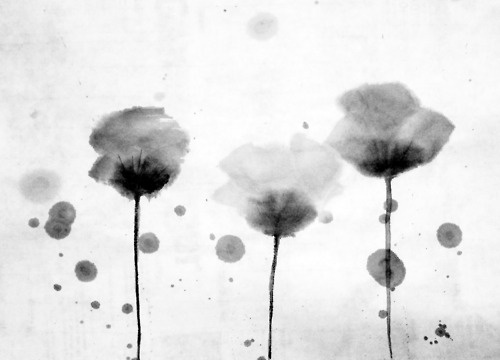 Poppies. Sumi-e on rice paper.
