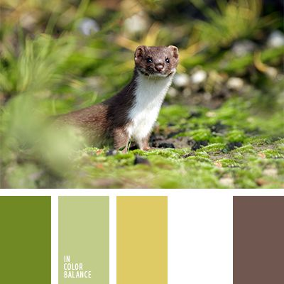 Color inspiration for any needs. Perfect color pallets for wedding and design.
