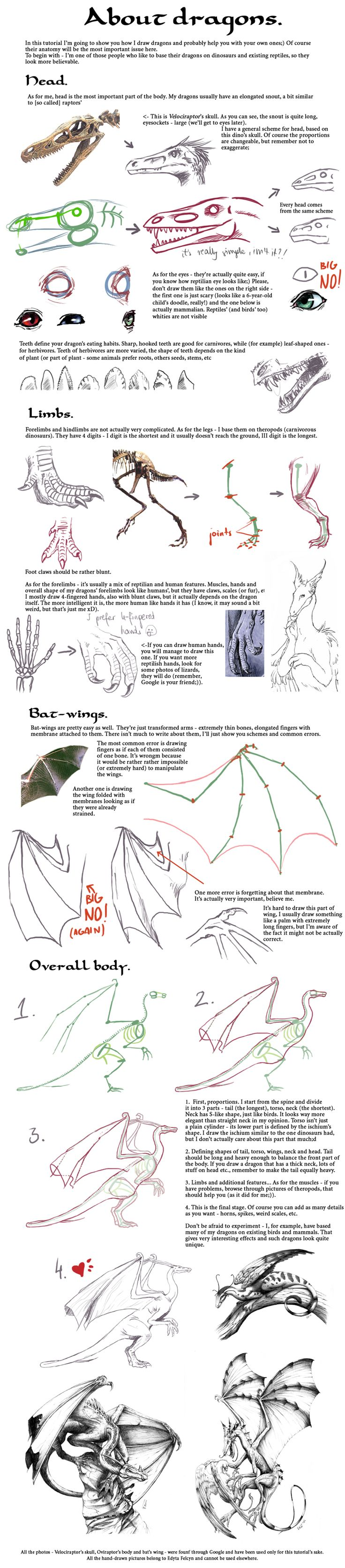 Tutorial: Dragons by =Sheil    CHARACTER DESIGN REFERENCES  