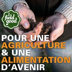 La Fondation Nicolas Hulot lance le mouvement « I Field Good »