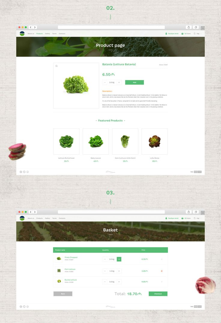A AGRO-Online shop on Behance