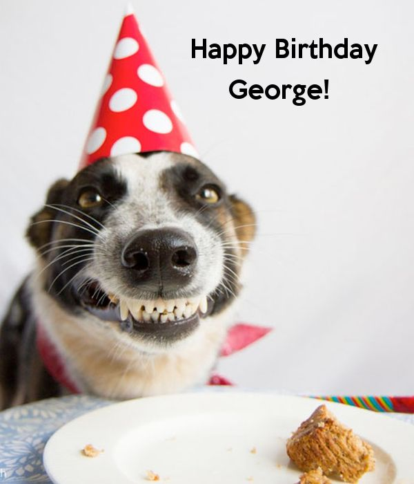Happy birthday George!