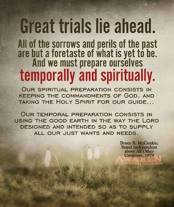 Bruce R Mcconkie Lds Pinterest Lds Lds Quotes And Quotes