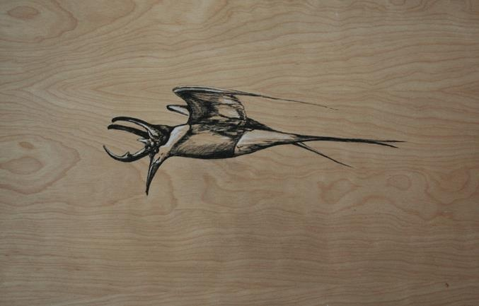Thrush with beetle horns, charcoal on wood drawing | Curiosities