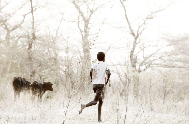 herdboy II