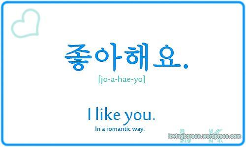 I like you in Korean