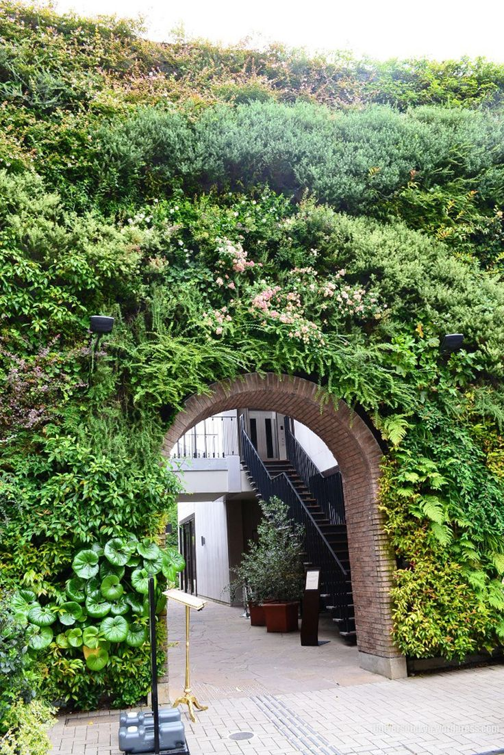wall covered with garden growing vertically around brick archway
