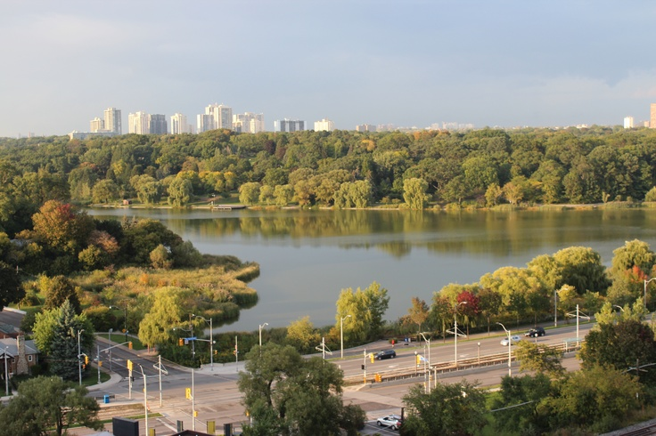 Views of HIgh Park
