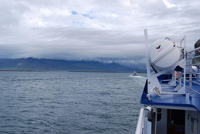 Barcos de avistamiento de ballenas