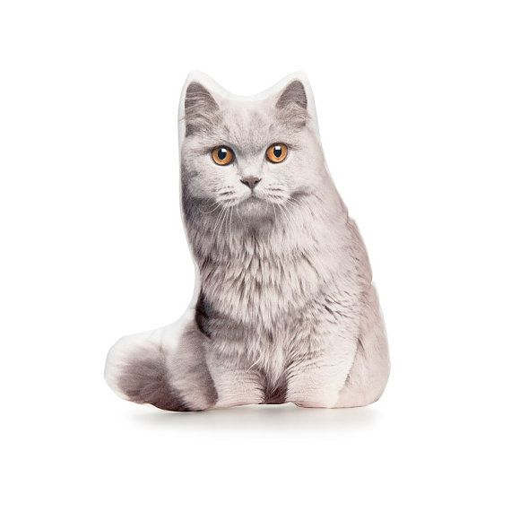 British Longhair British Cat I Love Cats Cat Lovers Gifts