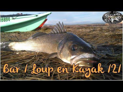 Peche du bar aux leurres en kayak partie 2  #kayak #leurres #partie