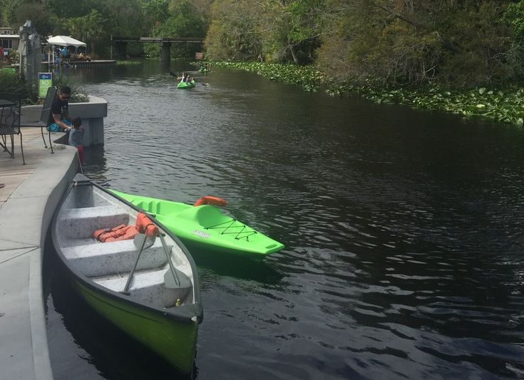 Orlando Além dos Parques: Wekiva Island