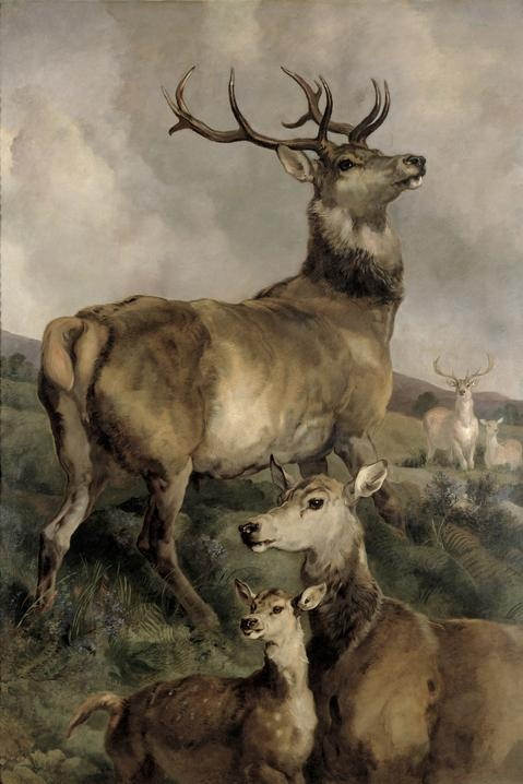 The Noble Beast by sir Edwin Landseer (1802-1873)