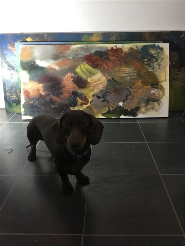 Dexter getting in the way of my painting
