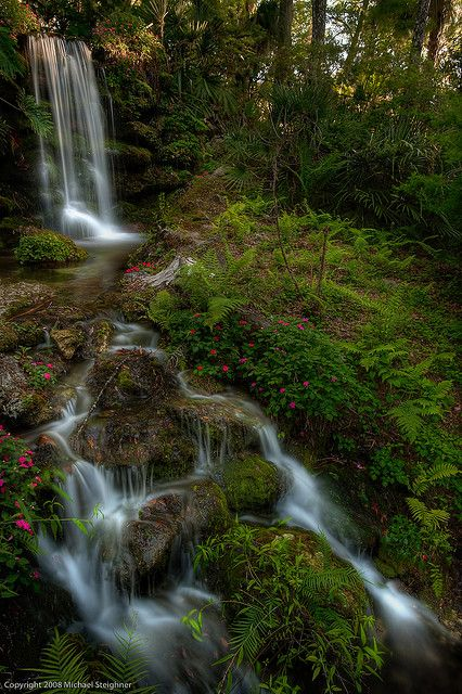 Rainbow Springs, Marion County, Florida
