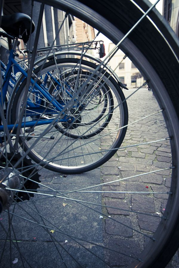 rays  #green #bike #urban #travel #afternoon #city
