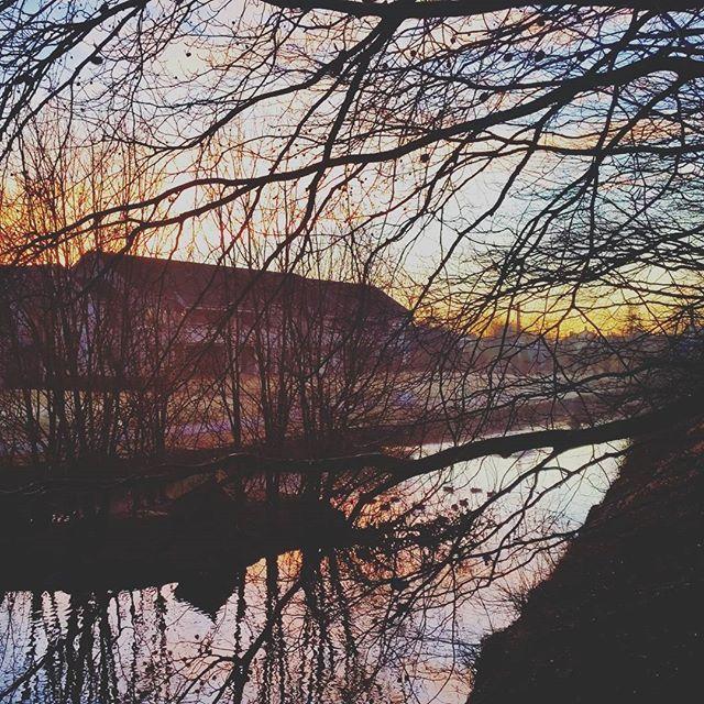 Morning bliss  #aftenbladet #jærbladet #jæren #klepp #morning #morningbliss #regionstavanger #rogaland #sunrise
