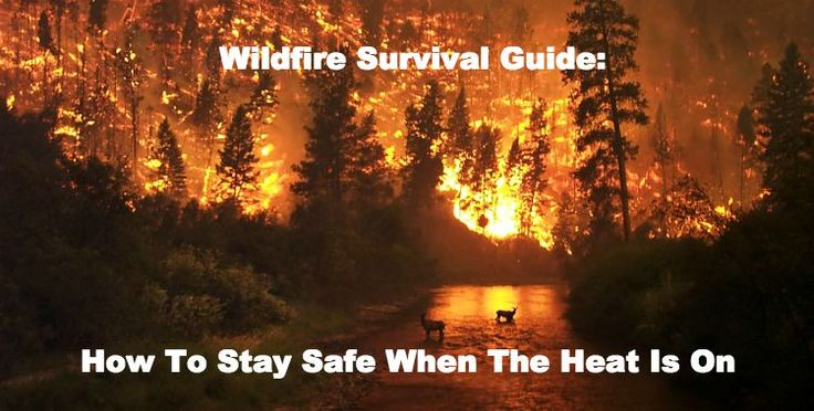 Wildfire Survival Tips: How to Survive Natural Disasters   https://survivallife.com/wildfire-survival-tips/