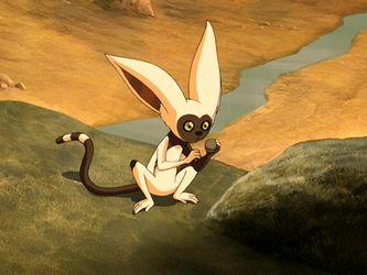 Flying lemur avatar - photo#45