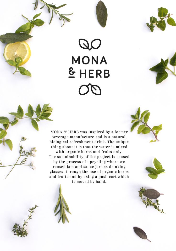 MONA & HERB was inspired by a former beverage manufacture and is a natural, biological refreshment drink. The unique thing about it is that the water is mixed with organic herbs and fruits only. The sustainability of the project is caused by the process …