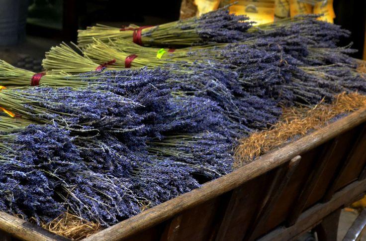 Bouquets of lavender in a quaint shop in Aix-en-Provence.