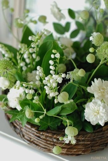There is a special quietness that comes with white baskets of flowers or bunches planted in the garden.