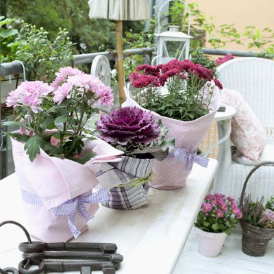 Inspiration by Home & Garden