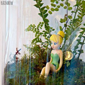 Tinkerbell Fairy Terrarium
