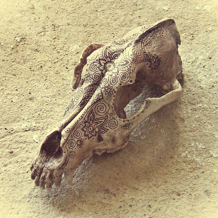 Cráneo de perro decorado. Hueso ornamentado por los dracónidas.