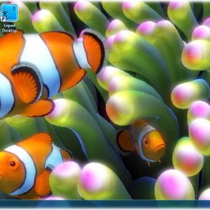 Live Wallpaper Or Pc Windows 8 300x300 For