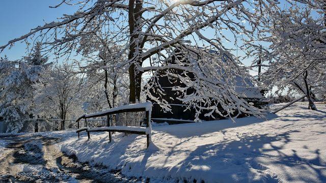 Dzisiejszy poranek w samej końcówce roku przywitał nas wspaniałym słońcem i błękitem nieba, dodając do tego wczorajsze lekkie opady śn...