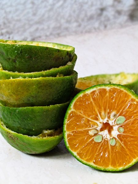 Nugpur (or possibly Dalandan) oranges