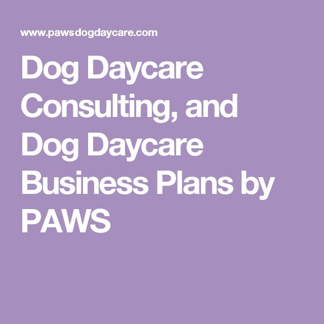The  Best Daycare Business Plan Ideas On   Daycare