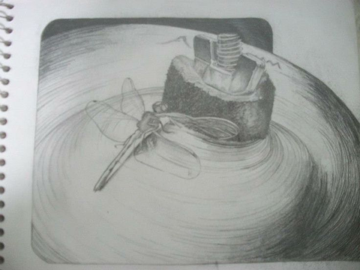 orginal picture by Daenen from the Midwaystate, sketch is mine ~Cat Bouthillier
