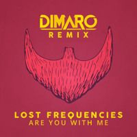 Lost Frequencies -Are You With Me ( Giancarlo Rizzo Mash - Up) by DjGiancarlo Rizzo on SoundCloud