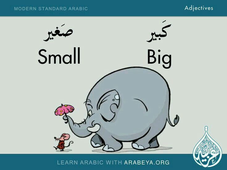 Arabic Adjectives size