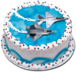 fighter plane cake.  at my ability level :)