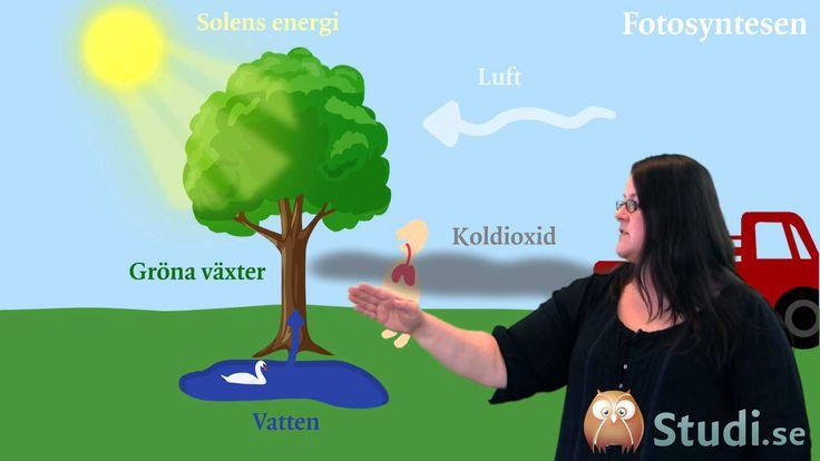 Energis flöde från solen (Fysik) - Studi.se