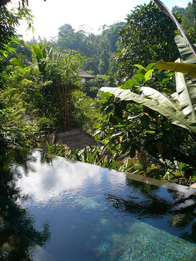 beautiful ubud hanging gardens in bali indonesia - Ubud Hanging Gardens Bali Indonesia