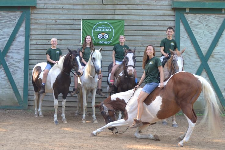 Wampee Stables Activities Page - Horseback Riding & Trail Rides Myrtle Beach, SC