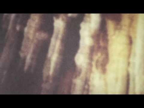 Joy Orbison & Boddika - TMTT (HQ Vinyl Rip) - YouTube